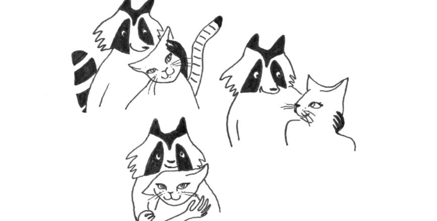 Illustrations SKAM